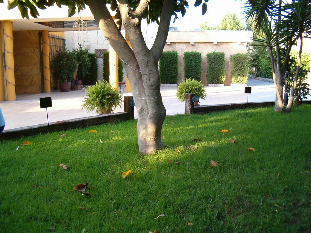 salones-canario-jardines