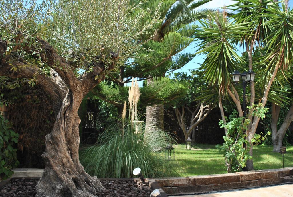 Jardines Abiertos